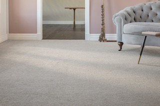 Anderson Tuftex Freeform Carpet