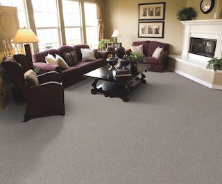 Lexmark Chandler Heights Carpet