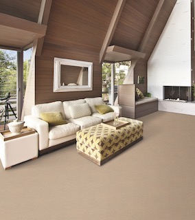 Lexmark Living Carpet