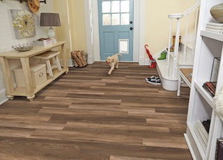 Phenix StainMaster Pet Protect LVT